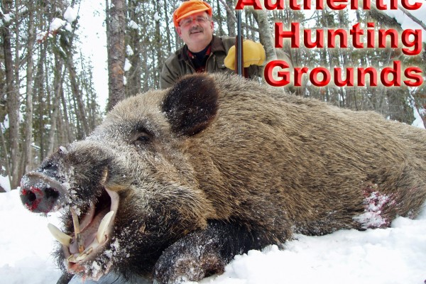 Russian Boar Hunting – Experience Real Snow Hunts